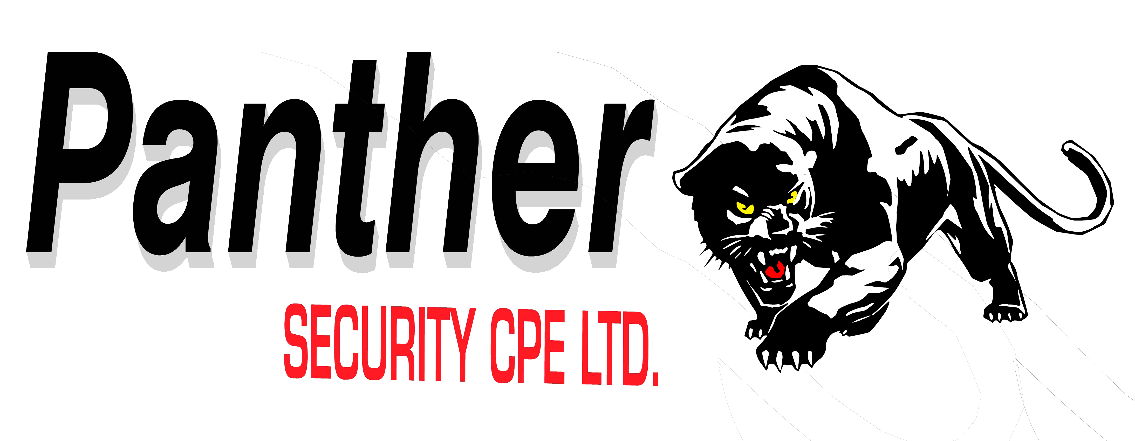 Panther CPE Security